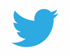 twitter-bird-blue-on-white (1)